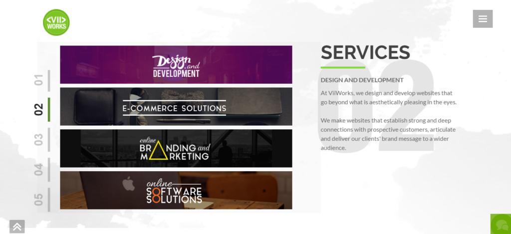 viiworks services